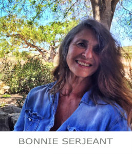 The Studio Art Gallery - Portfolio Artist - Icon Pic - Bonnie Serjeant