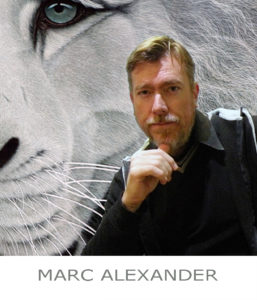 The Studio Art Gallery - Portfolio Artist - Icon Pic - Marc Alexander