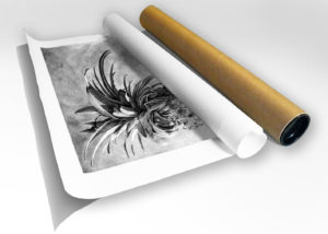 The Studio Art Gallery - Print in Tube - Joy by Craig Ivor