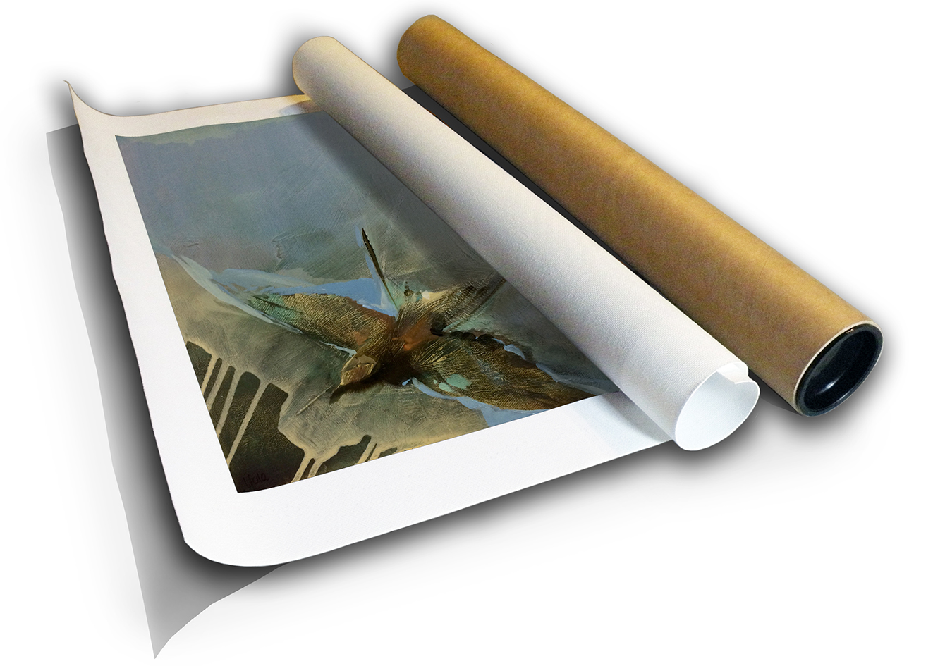 The Studio Art Gallery - Bee Eater by Yola Quinn - Canvas Print in Tube