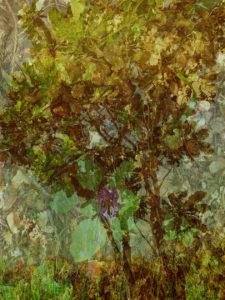 The Studio Art Gallery - Breath by Robyn Schoon - 120 by 90 cm