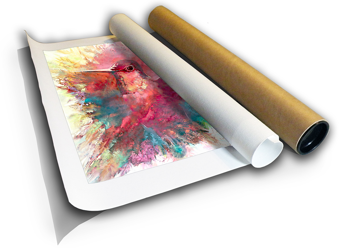 The Studio Art Gallery - Humming Bird by Yola Quinn - Canvas Print Rolled in a Tube