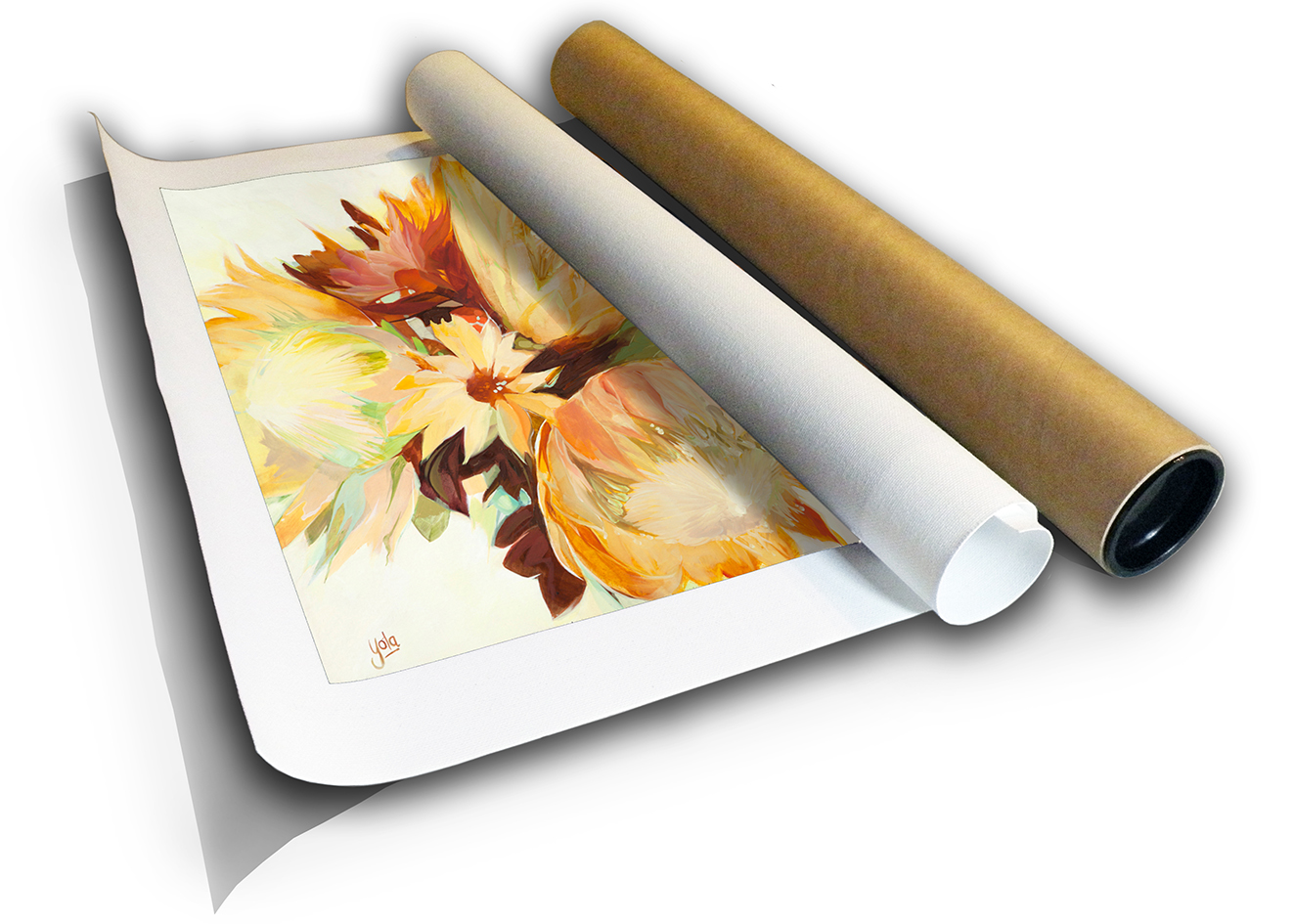 The Studio Art Gallery - Proteas I by Yola Quinn - Canvas Print Rolled in a Tube